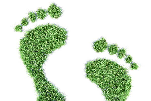 UNSW conducts sustainable procurement study