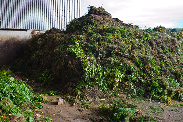 NSW businesses, councils, agricultural associations and project communicators can now apply for the second round of grants to promote the benefits of compost into new markets.