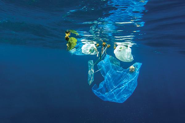 EU's ban on single-use plastics: Australian potential