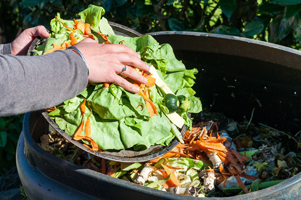 NSW Govt boosts organics collection funding by $4.9M