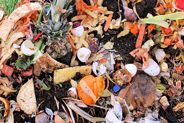 National Food Waste Baseline report released - Waste Management Review National Food Waste Baseline report findings released