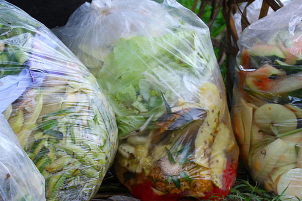 Yume and REMONDIS working together to reduce food waste